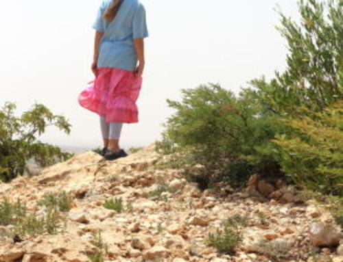 Going for a Walk. In Somaliland.