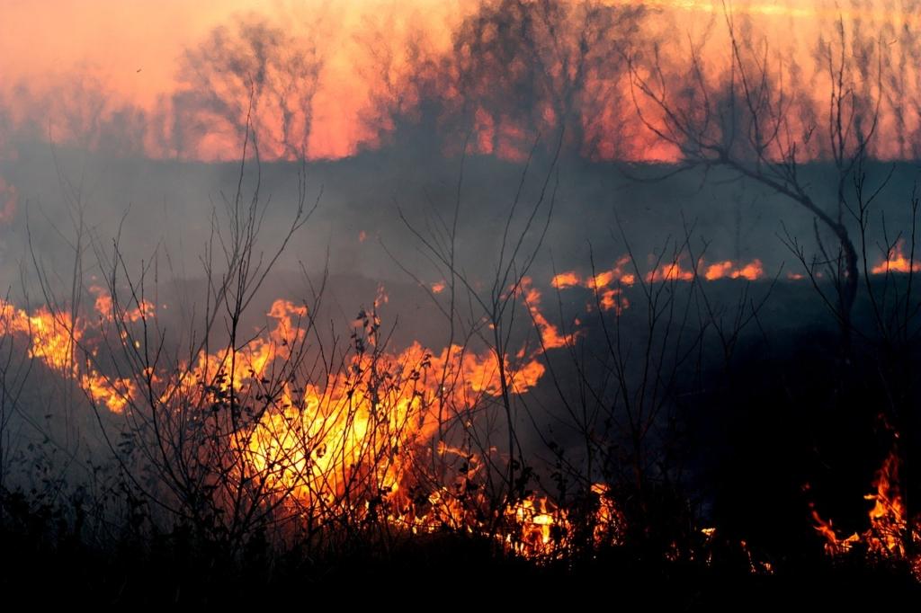 fire-1265718_1280