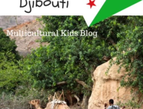 Fun Facts about Djibouti