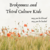 About the Sexual Abuse of Third Culture Kids, Resources and Way Too Many Links